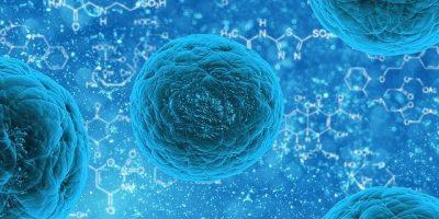 Dépistage du coronavirus sur présentation de la Carte de Professionnel de Santé